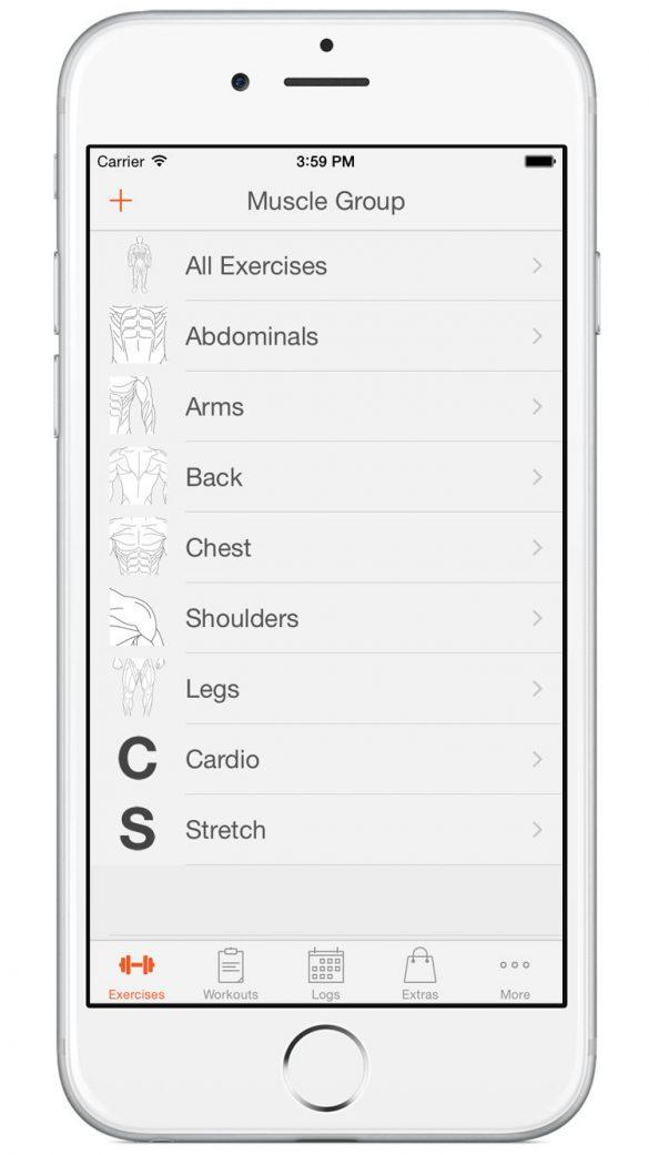 Die Übungen werden in Muskelgruppen aufgeteilt